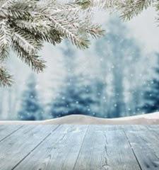 Snow-281x300