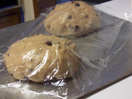 italian-chocolate-chip-bread 017