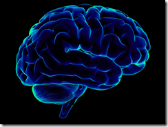 human-brain_01