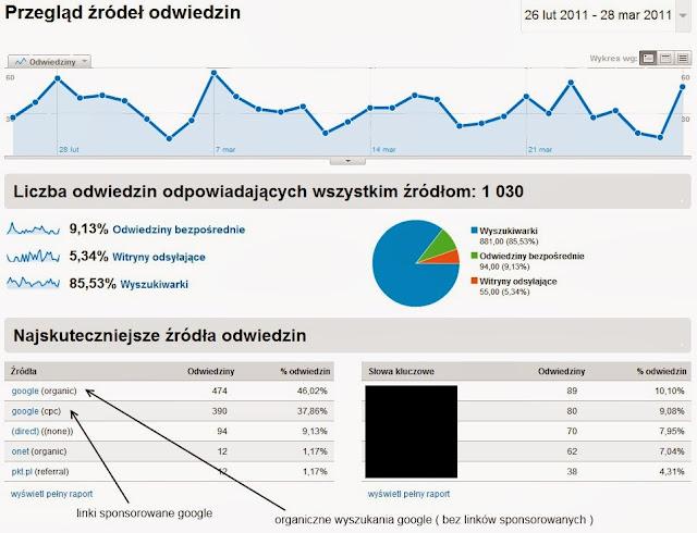 raport_zrodla_odwiedzin.jpg