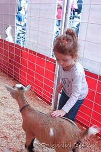 Madison at the fair