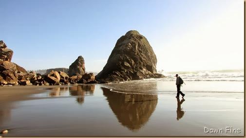 Harris Beach_141