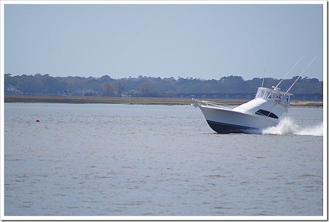 speed-boat-public-domain-picture (2)