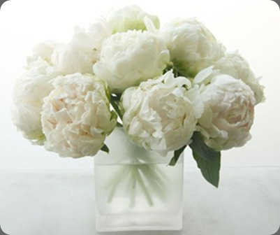 Peonies_this_product_is_just_starting_for_the_season.1 michael george