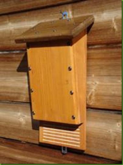 bat-box-per-pipistrelli..lotta-biologica-alle-zanzare189