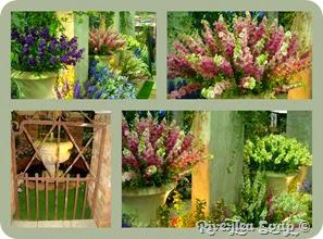 Garden show 2010 (1)