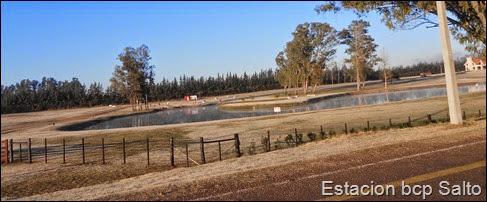 Helada en Salto (27.8.13)