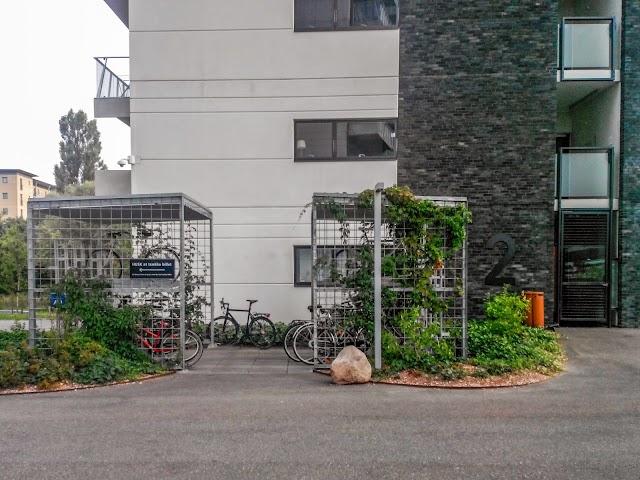 2014-08-07 08.12.13_1.JPG