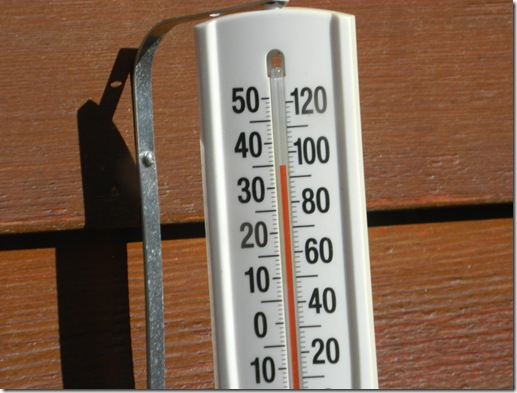 thermometer 002