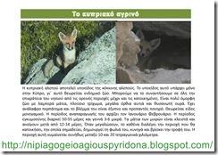 τα ζώα της Κύπρου(12)
