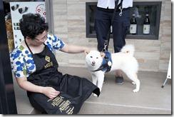 堂主與狗狗