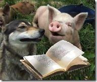 cane-e-porco-libro_1