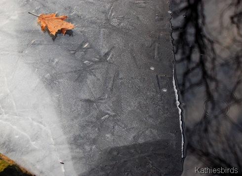 1. Skug river ice-kab