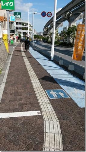 Okinawa 019 near Oroku station