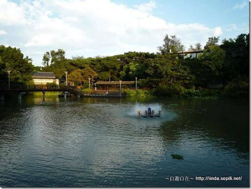 新竹公園-麗池-3