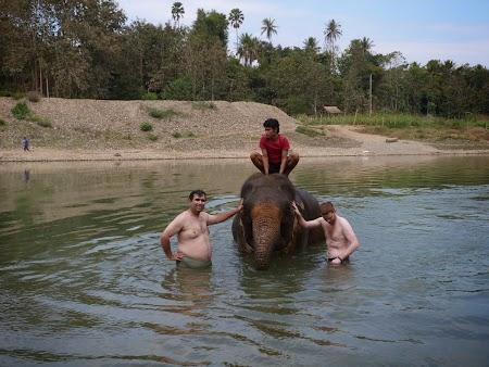 10. Cu un elefant in Thailanda.JPG