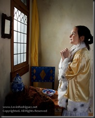Blog2014__20121028_vermeer-LittleGirlWithAPearlNecklace