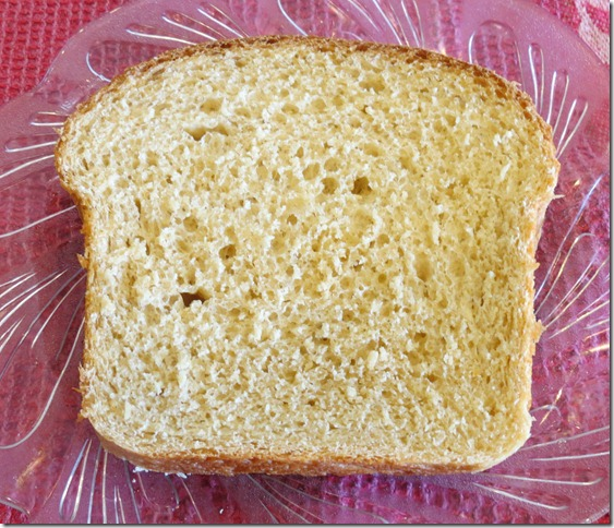 Whole Wheat Bread Slice