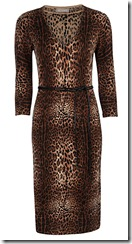 Planet Leopard Print Knit Dress