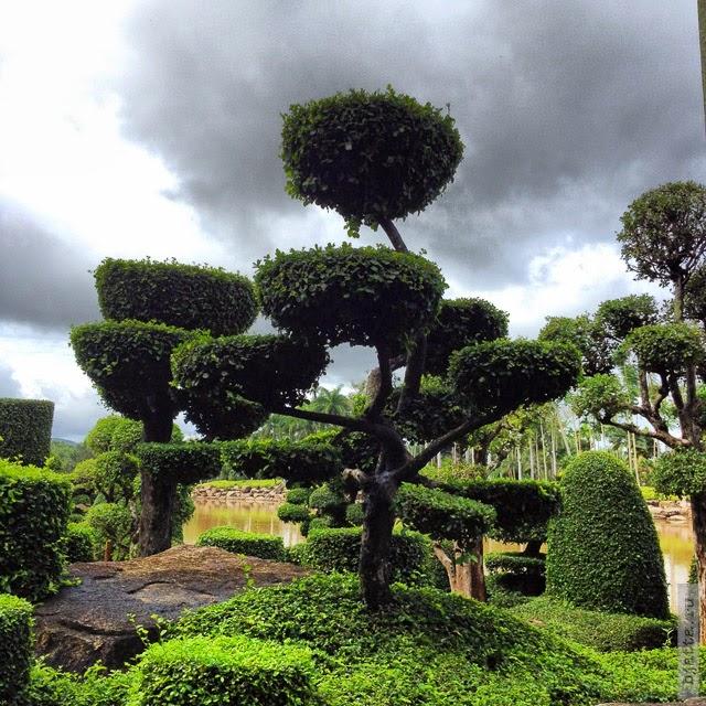 2012. Nong Nooch. Thailand. Pattaya. Гнездо летающих тарелок.