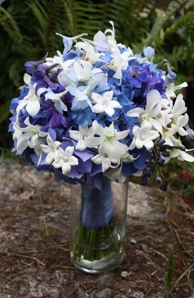 216670_10150340568060152_5080441_n flora organica designs