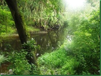 #25 river path 006