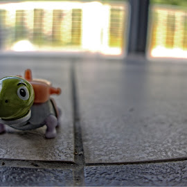 Back From the Journey by Azhar Aziz - Artistic Objects Toys ( cartoon, bag, backpack, journey, small, turtle )