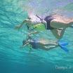 Buck Island Reef - IMGP1246.JPG
