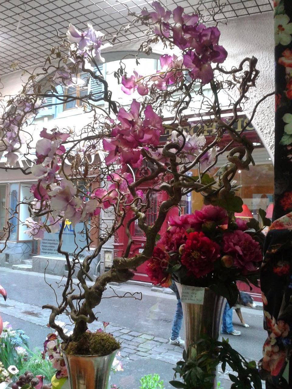 Home jasmin nouvelle vitrine printemps t 2014 - Decoration vitrine printemps ...