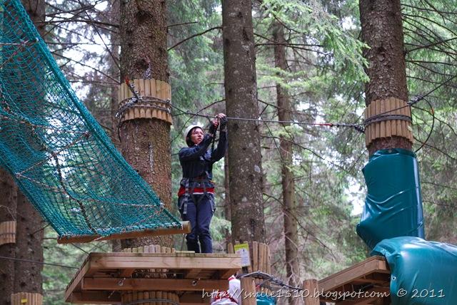 agility sugli alberi 4