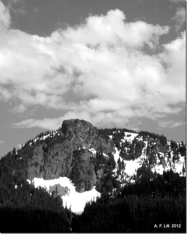 Mt. Rainier National Park, Highway 410, Washington.  July 24, 2011.  Photo of the Day, May 19, 2012.