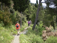 AMALFI - LANDSCAPE WALKERS &amp; FOREST
