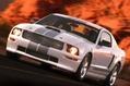 Ford-Mustangs-11