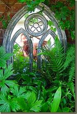fern thelypteris