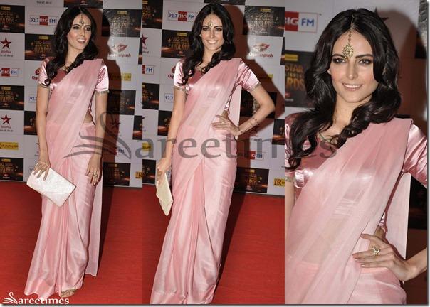 Pink_Designer_Plain_Saree