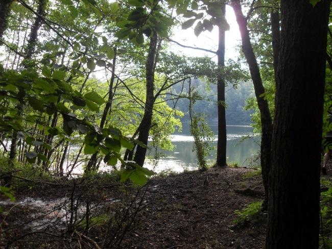 Rubinsøen