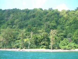 Spiaggia Parco Nazionale di Ujung Kulon