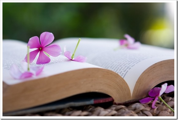 Lectura semana don dividendo 12-2013