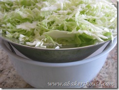 cabbage drains for coleslaw
