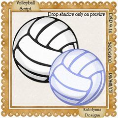KD_VolleyballScriptPreview