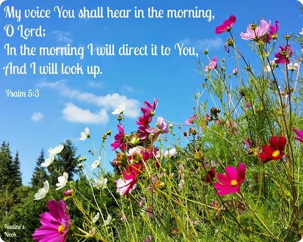 Psalm5.3