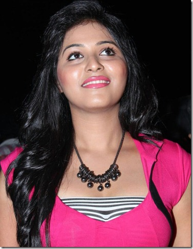 Actress Anjali at Settai Movie Audio Launch Stills