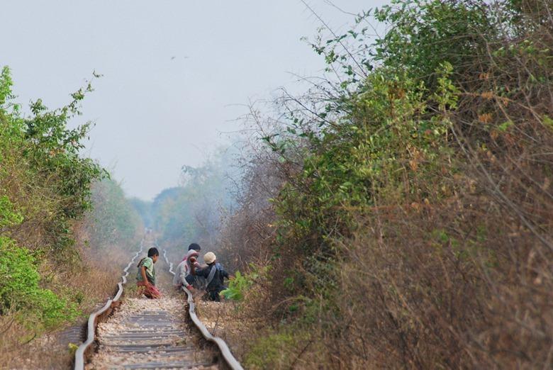 bamboo-trains20