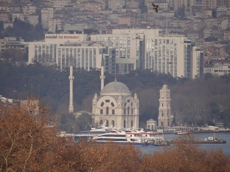 Moscheea Dolmabahce si Swissotel Istanbul