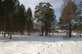 DSC 0097 Зима   общие виды