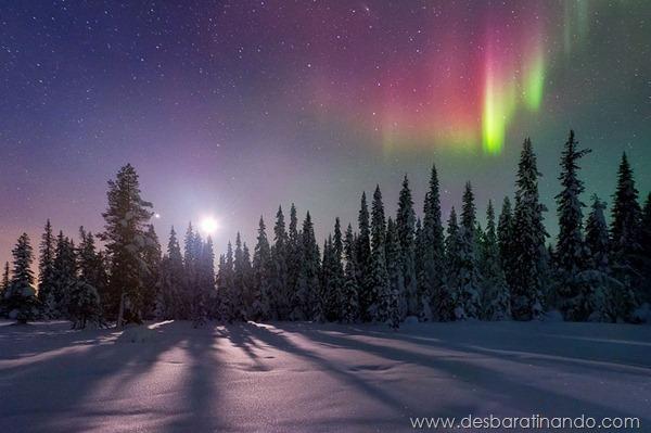 paisagens-de-inverno-winter-landscapes-desbaratinando (19)