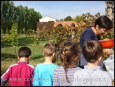 Classi 2°A e 2°B Scuola primaria Padulle all'OrtoQua - ottobre 2013 (37)