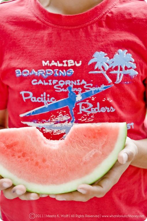 Watermelon2011 (001) By Meeta K. Wolff