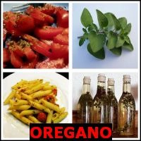 OREGANO- Whats The Word Answers