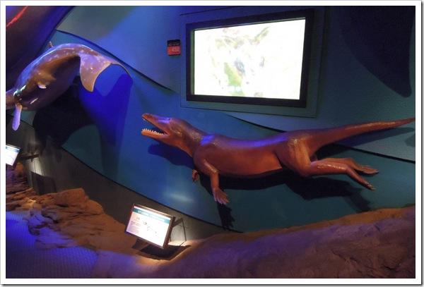 海生哺乳類的演化